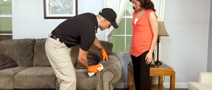South Plainfield, NJ carpet upholstery cleaning