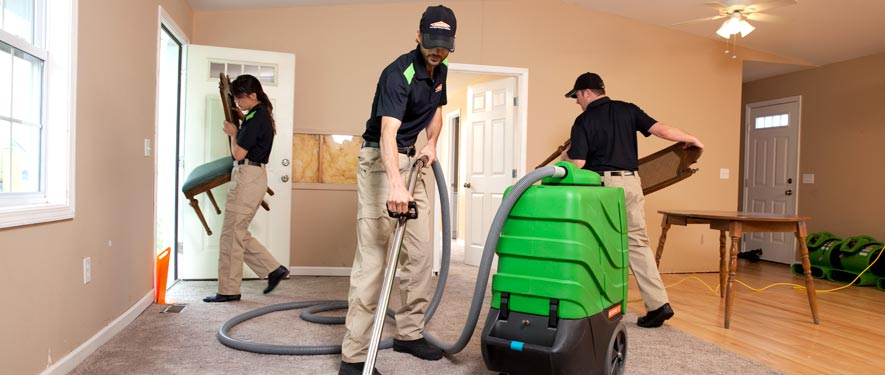 South Plainfield, NJ cleaning services